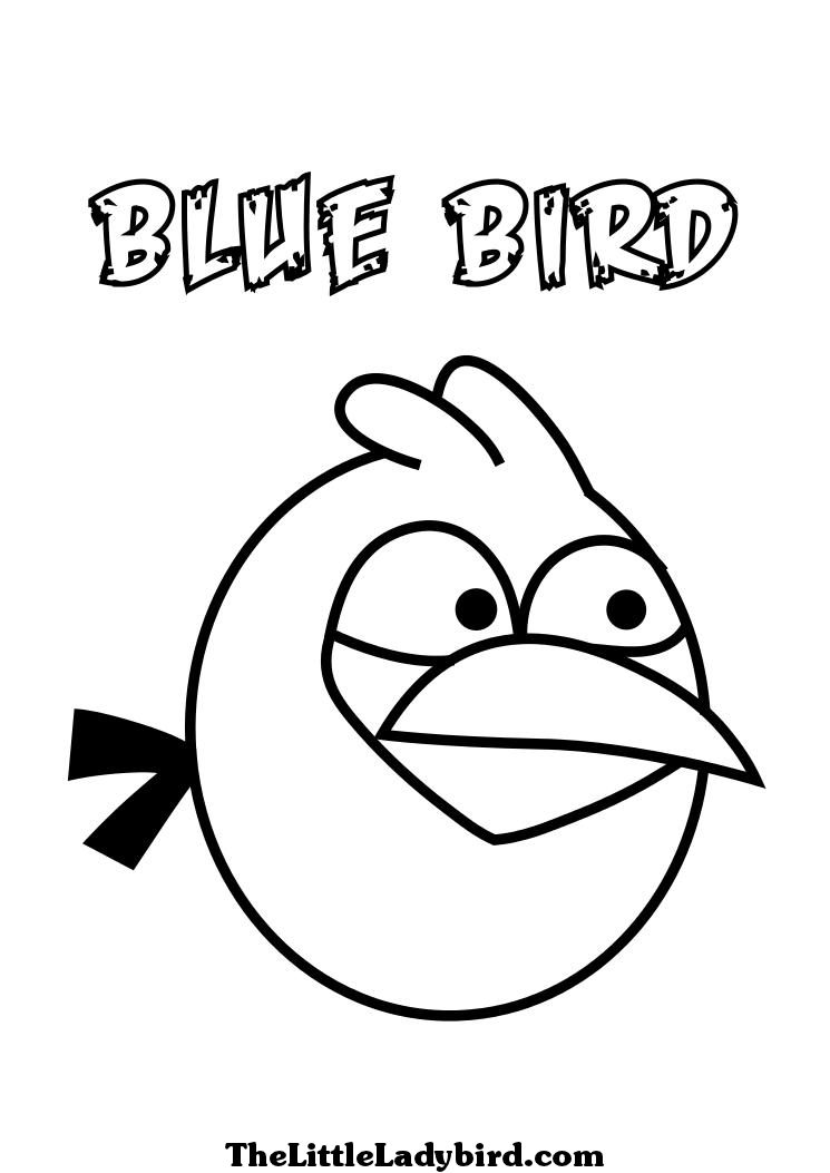 Young Angry Birds Coloring pages Free Printable Coloring