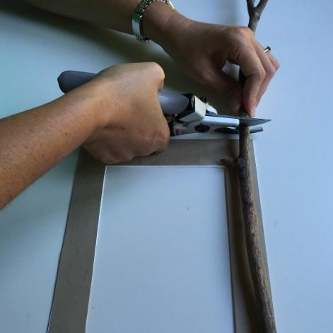 cortamos los palos con la tijera de poda