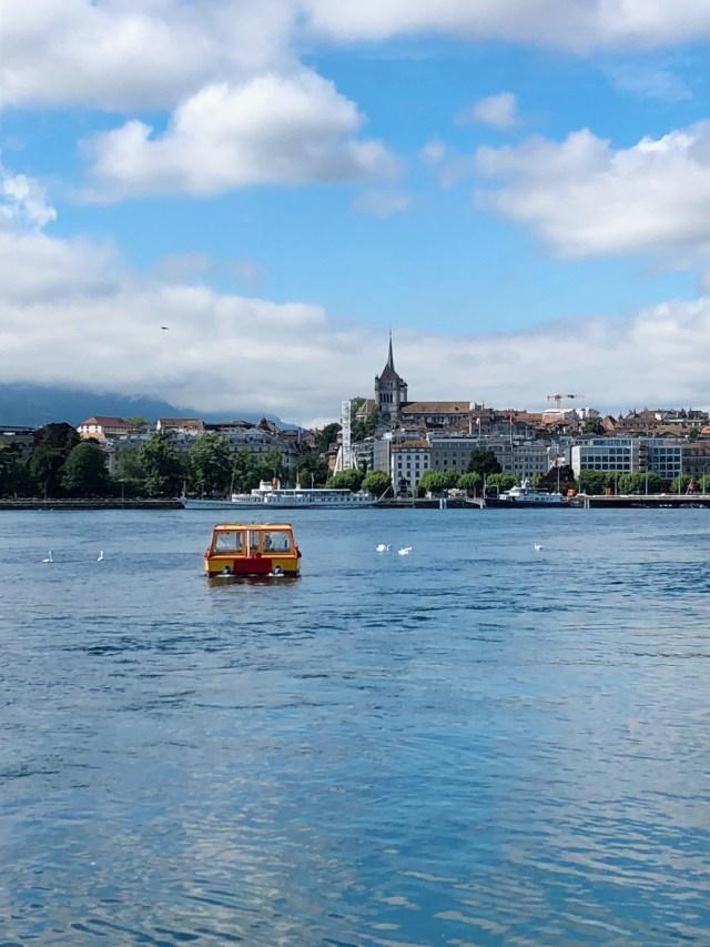 Summer in Geneva
