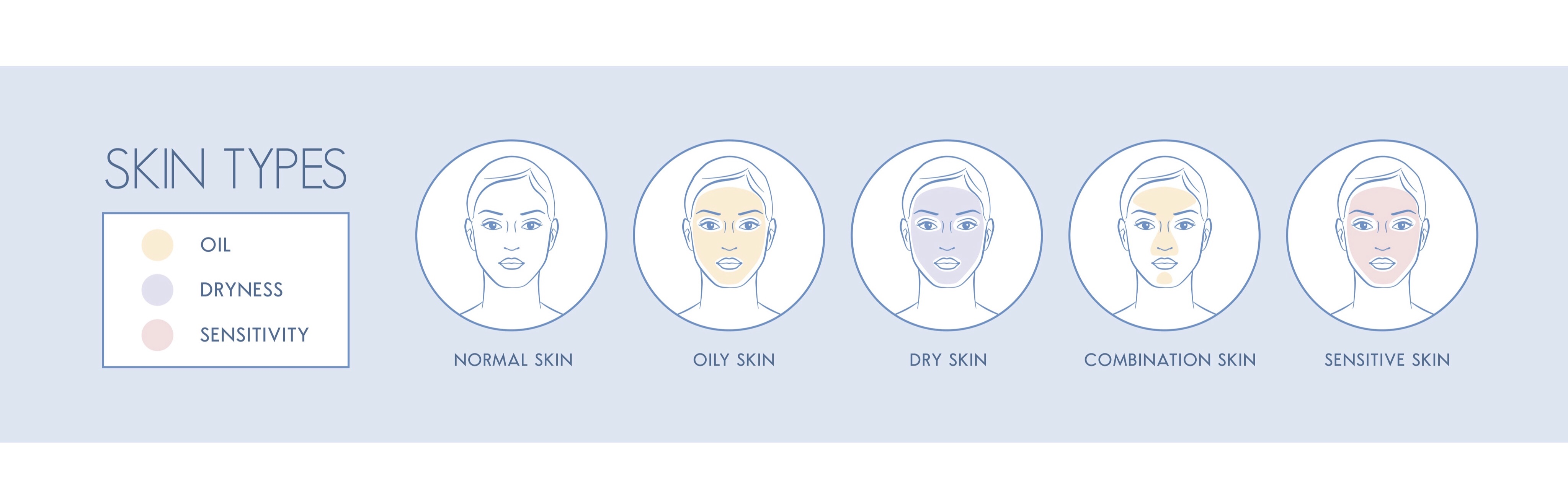 The different kinds of skin types
