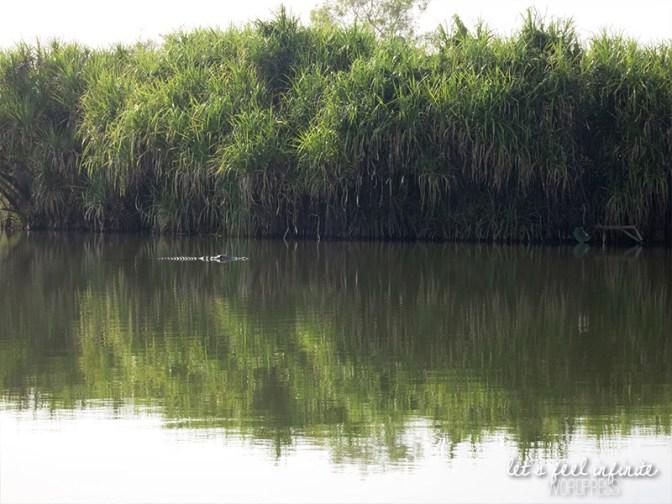 Mary River - 1