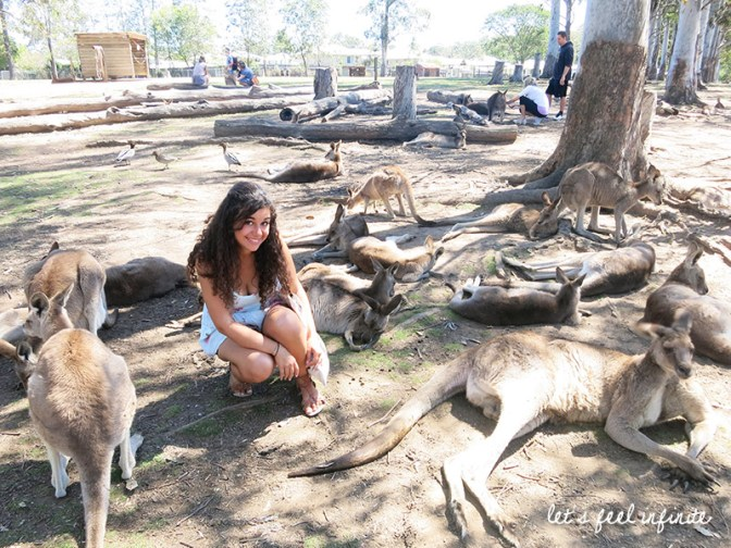 Lone Pine - Among kangaroos