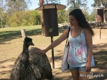 Lone Pine - Petting an emu