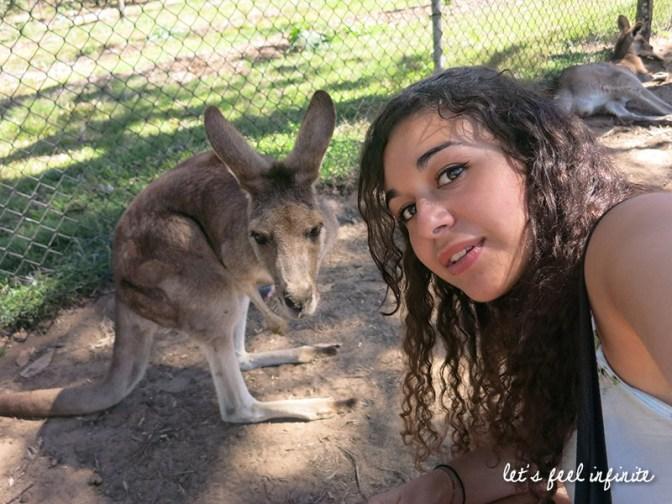 Lone Pine - Selfie with a badass kangaroo