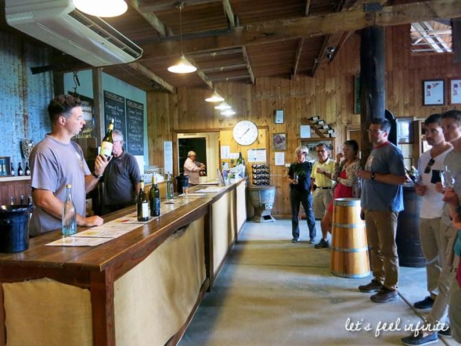 Yarra Valley Wineries Tour - Yering Farm 2