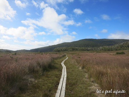 cockle-creek-walk