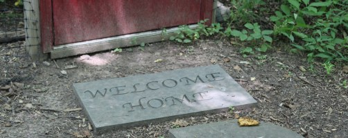 """a stone mat with """"Welcome Home"""" carved in it in front of a red door"""
