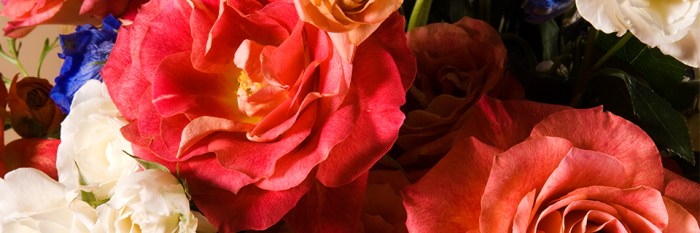 fine-art-and-flowers_header_web