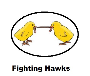 Fighting Hawks