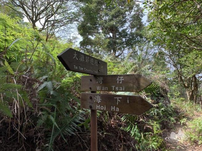 大灘郊遊徑>攔路坳>海下