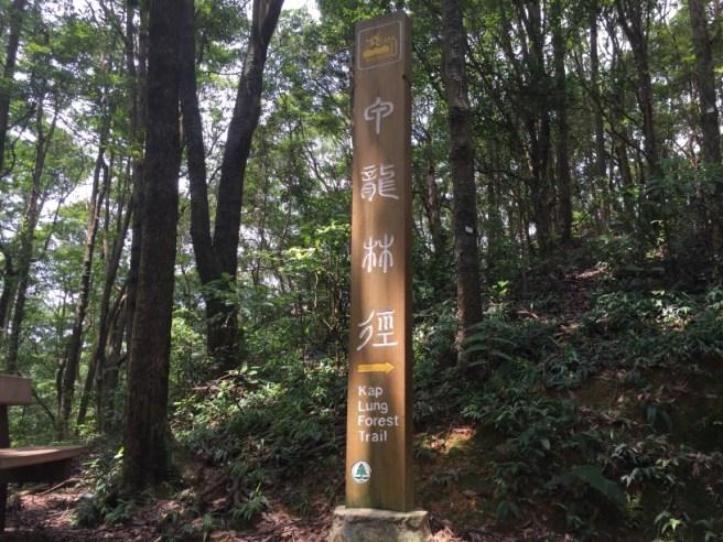 甲龍林徑>河背灌溉水塘>河背村