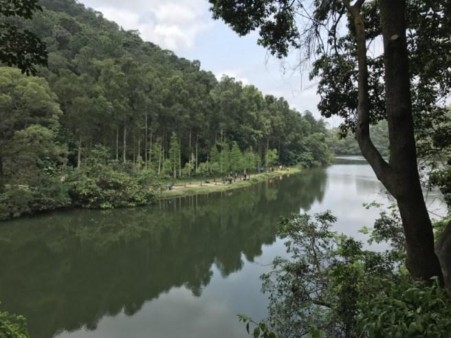 流水響>流水響灌溉水塘>流水響郊遊徑>九龍坑山>流水響郊遊徑>流水響