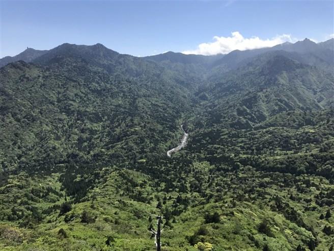 日本屋久島 ~ 白谷雲水峽