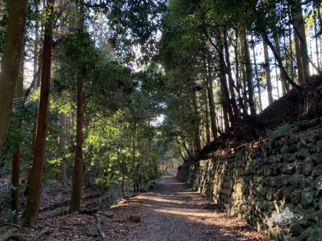 日本京都 ~ 大文字山