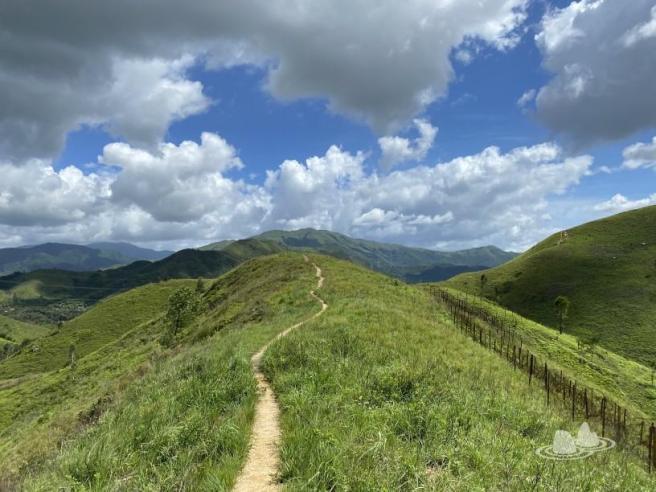 落馬洲路>鐵坑山>蛇嶺>鷓鴣坑>落馬洲路
