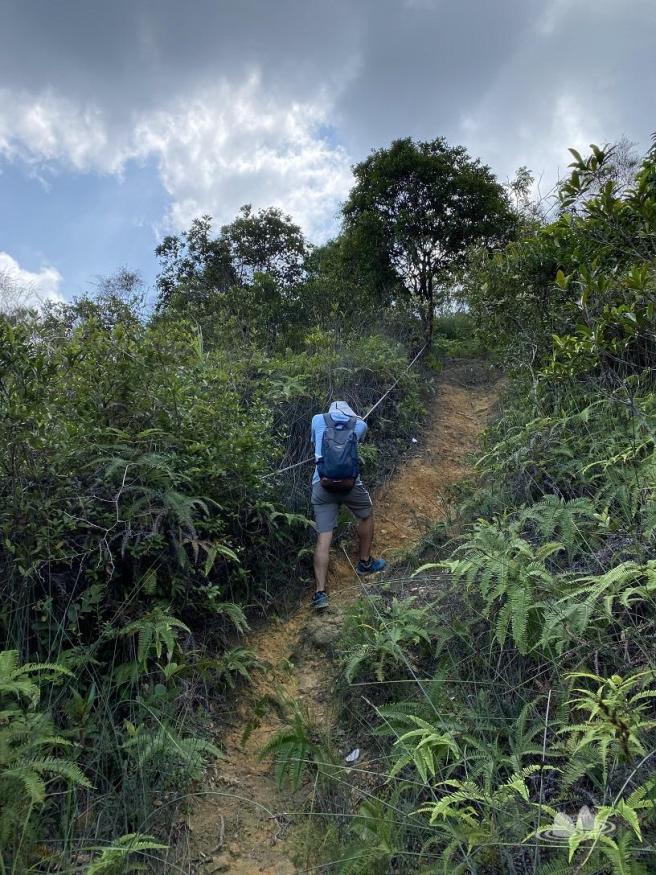 Hiking 27.9.2020 Kam Lung Leng (11)