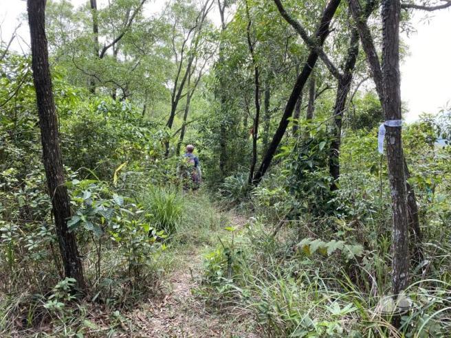 Hiking 4.10.2020 Fung Hang (16)