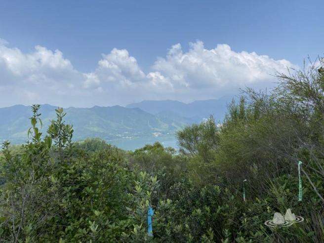 Hiking 4.10.2020 Fung Hang (19)