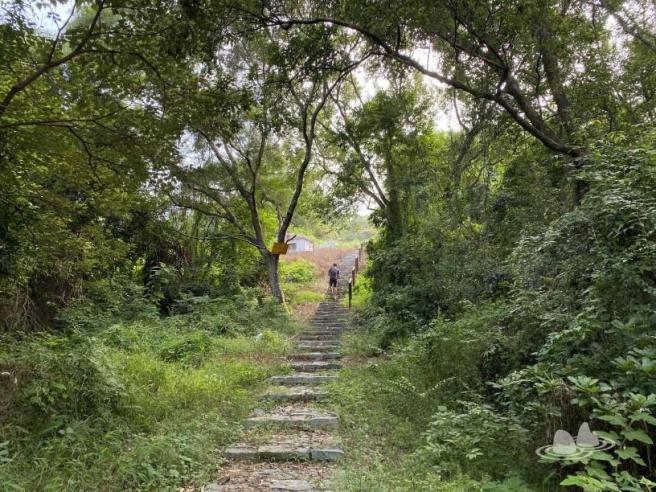 Hiking 4.10.2020 Fung Hang (72)