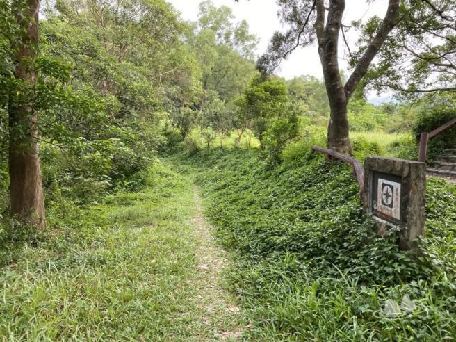 Hiking 4.10.2020 Fung Hang (77)