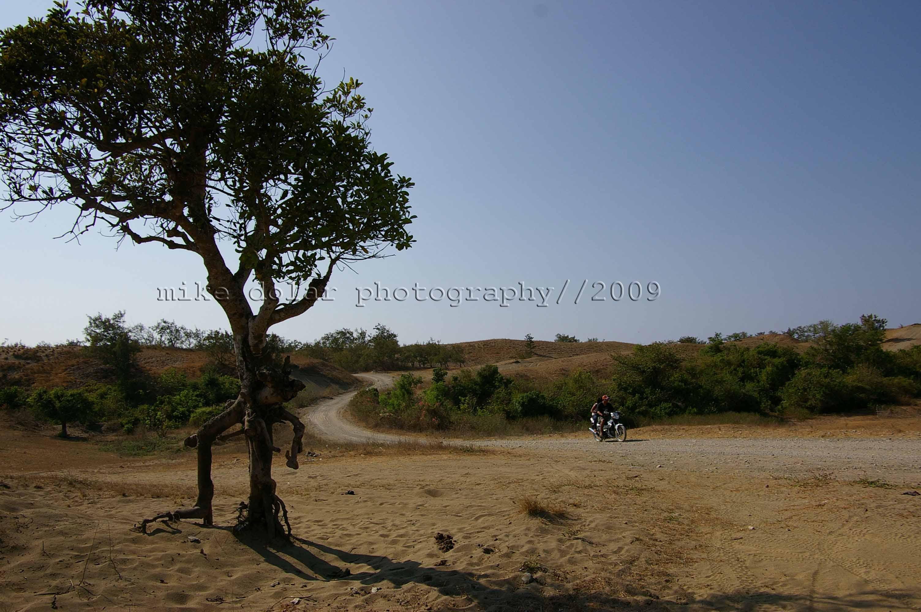 lonely road at la paz sand dune