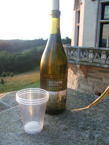 Three glasses, three women, the sunset