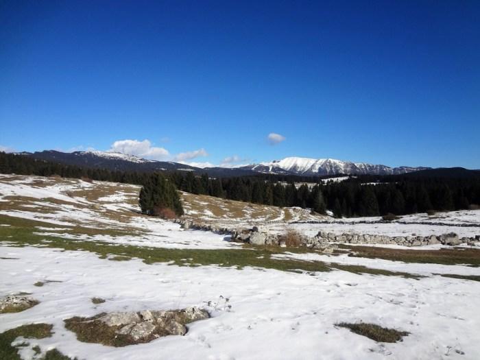 Sulle tracce dell'orso paesaggio