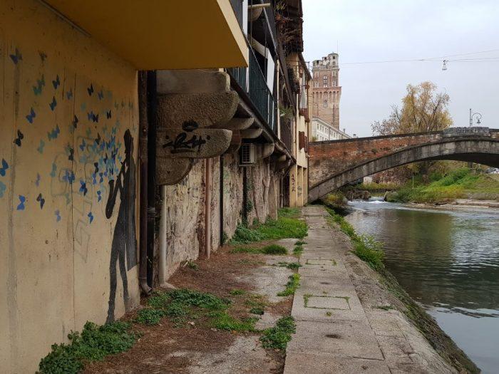 The musician - Padova a caccia di Street Art