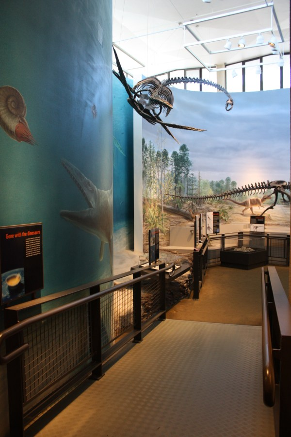 Burke Museum Of Natural History And Culture '