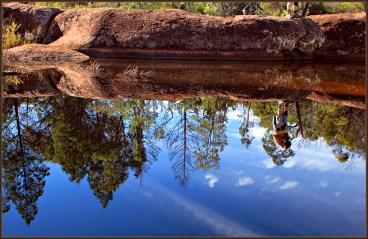 Photographer's-Reflection