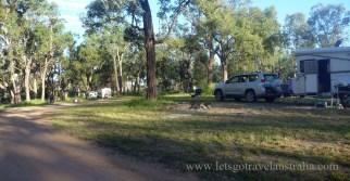Judds-Lagoon-Camping-1