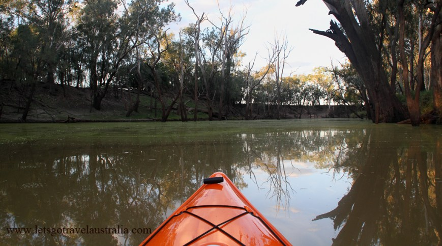 Paddling-on-the-Condamine