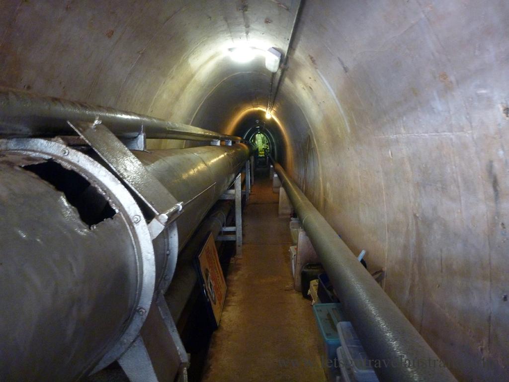 Darwin-Tunnels-1