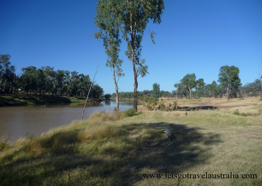 Camp-area-at-Balonne-River-St-George