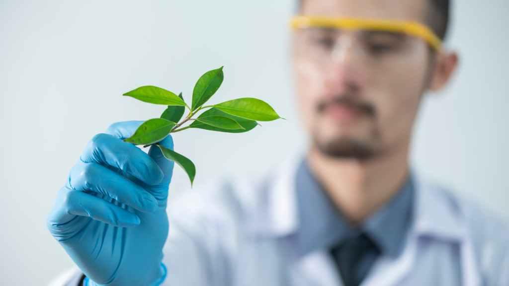 Scientist with plant based ingredients