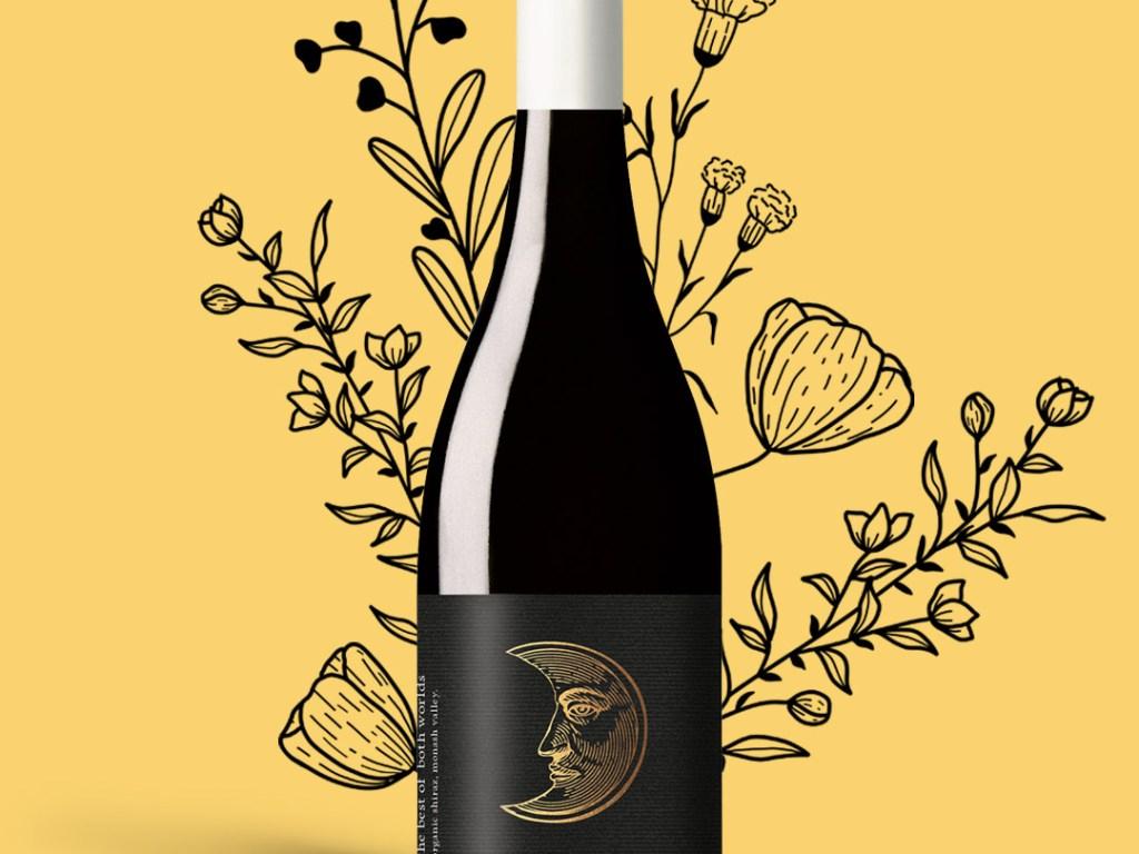 Wine of the Week by Vineful - Best of Both Worlds Organic Shiraz 2017.