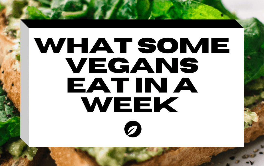 What vegans ate this week