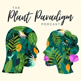 Podcasts we are listening to this week
