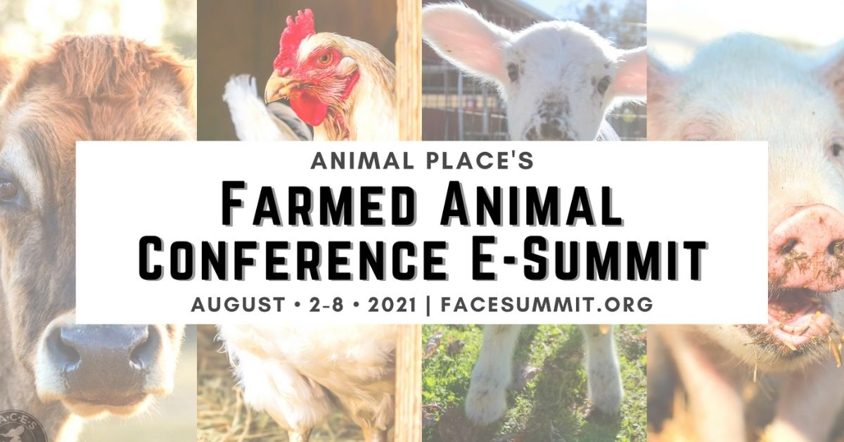 Farmed Animal Conference E-Summit 2021 schedule is live