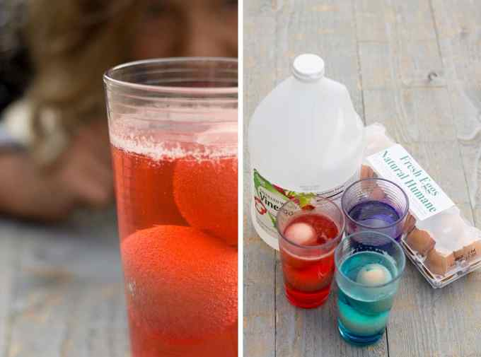 The Naked Egg Experiment | Sweeet thangs | Pinterest