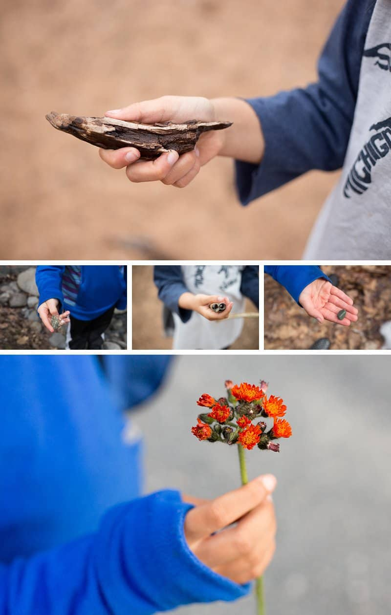 """Taking photos of treasures your kids collect while slow hiking is a way to say """"I see you."""" *Great article for parents!"""