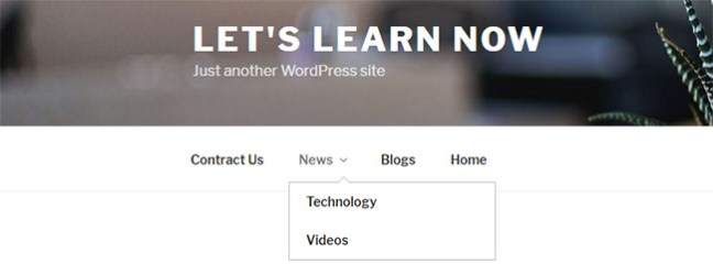 How to create and add a navigation menu in WordPress -8