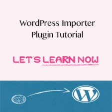 How to use WordPress Importer Plugin