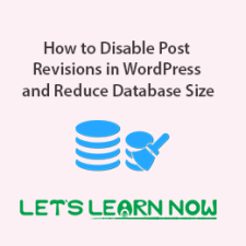 How to Disable Post Revisions in WordPress and Reduce Database Size