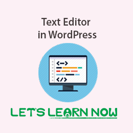 What is Text Editor in WordPress