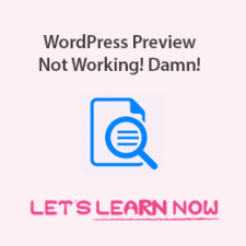 WordPress Preview Not Working Properly3-min