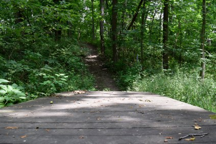 Phipps Prairie Park - The second trail is more challenging, but a lot of fun.