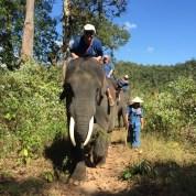 Bareback on an elephant in Thailand