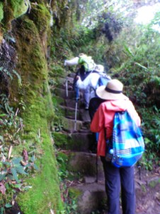Taking the Inca Trail steps
