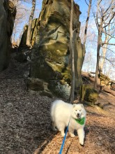 Kaia on her hike through the rocks at Wildcat Den Park